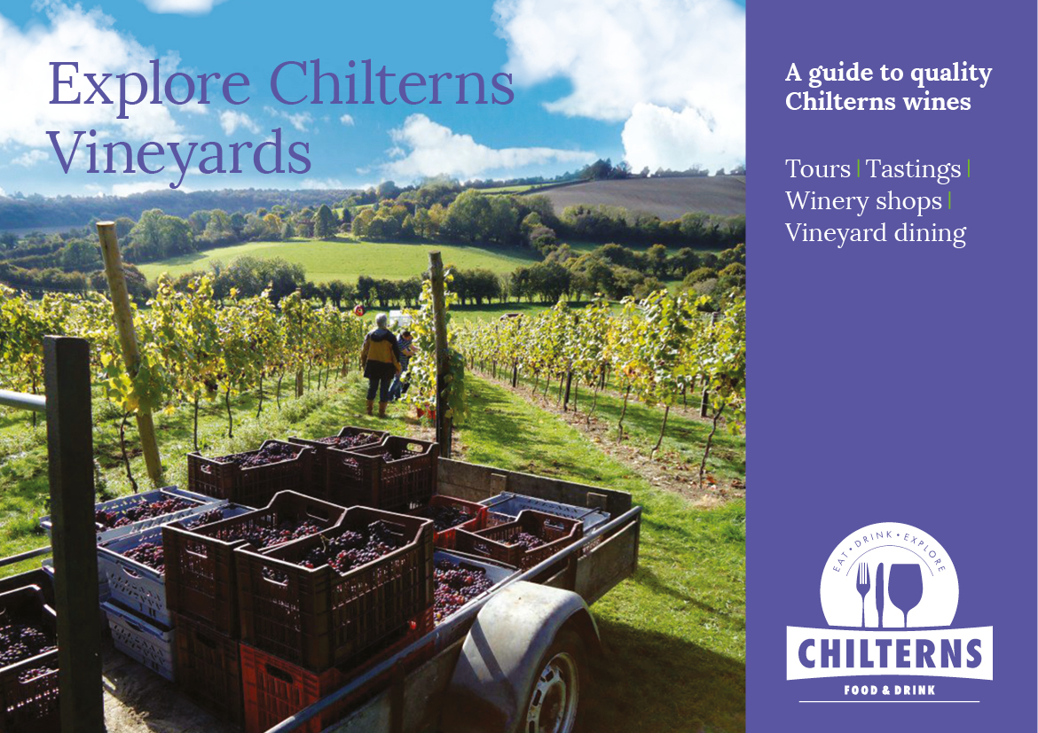 Explore Chilterns vineyards